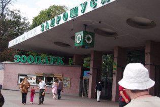 Київський зоопарк просить приносити йому всякий непотріб