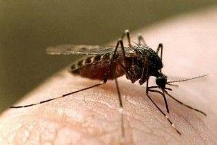 У Греції жертвами укусів комарів стали семеро людей