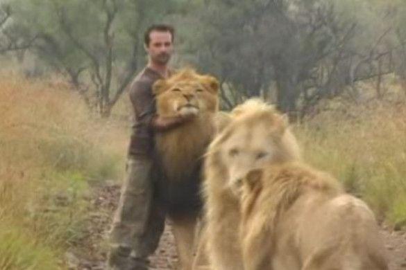 життя з левами