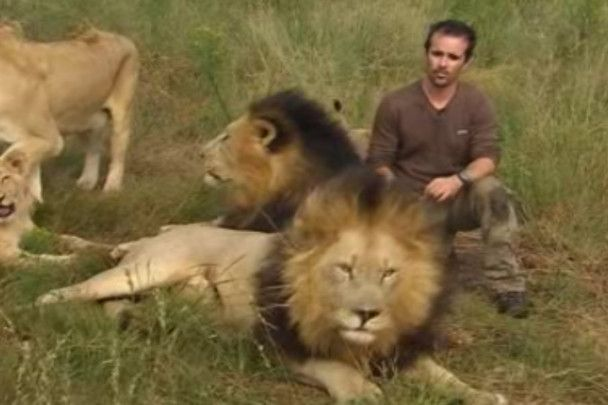 Чоловік в Африці поселився з прайдом левів