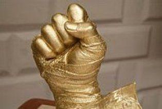 Віталій Кличко отримає кулак Тайсона