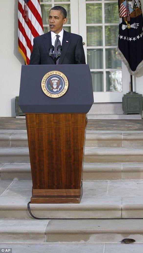 Обама, миша