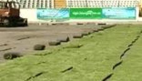 Розпродаж трави