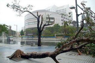 Из-за тайфуна в Китае эвакуировали больше 200 тысяч людей