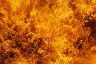 Из-за сильной жары Украине угрожают пожары