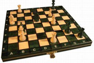 Стартував матч між Топаловим і Камським