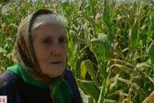 Світовий банк та МВФ: в Україні швидко старіє населення