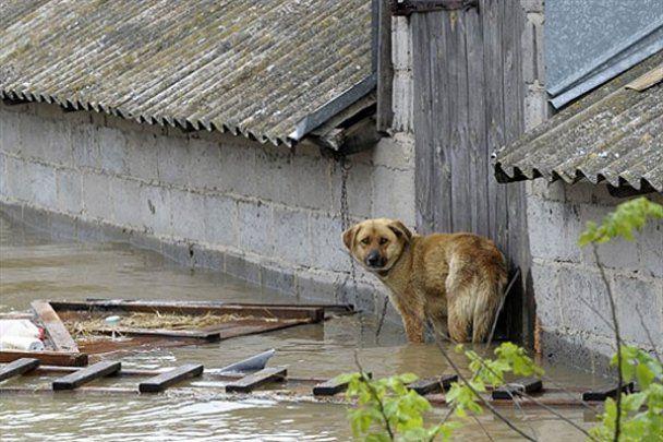 Разрушительные наводнения в Польше