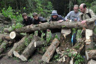 Харківський парк вирубують: опір захисників дерев придушено