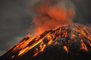 Вчені: доісторичні тварини вимирали не через виверження вулканів