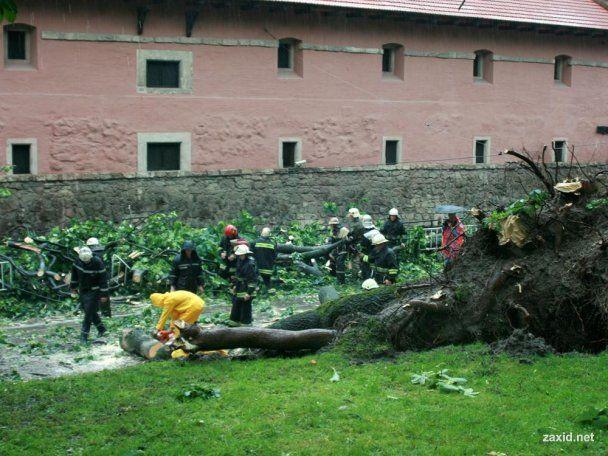 Львів оцінив збитки від урагану в 10 мільйонів гривень
