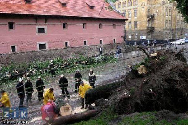 Во Львове буря перевернула маршрутку с пассажирами
