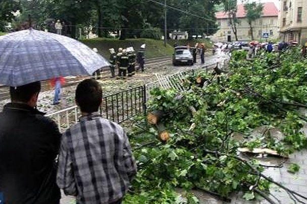 Надо Львовом пронесся ураган: есть  пострадавшие