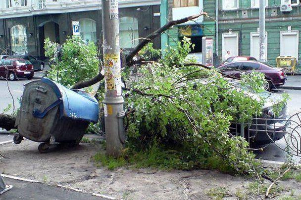 У Києві буря розтрощила сотні дерев і десятки машин