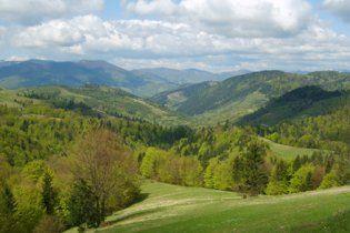 На Закарпатье в горах ищут туриста, который исчез три дня назад
