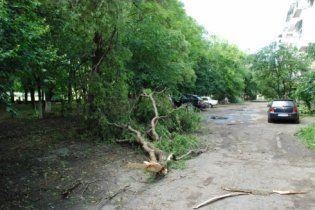 На Закарпатье устраняют последствия невиданного урагана