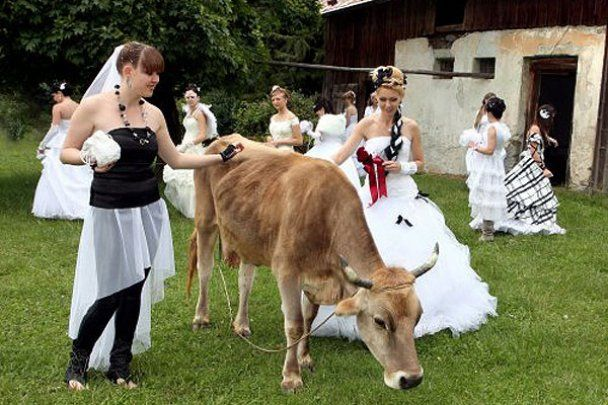 Закарпатський парад наречених в Ужгороді