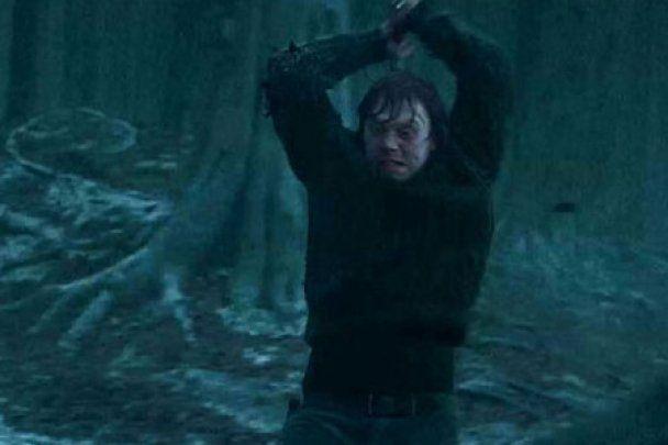 В інтернеті заговорили про можливе продовження Гаррі Поттера