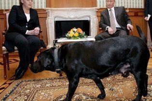 В Санкт-Петербурге планируют установить памятник собаке Путина