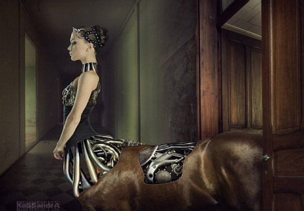"""Голая """"NikitA"""" снялась в фотосессии с лошадьми"""