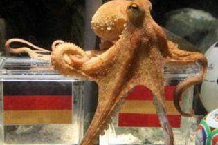 Німеччина приречена на фіаско у півфіналі чемпіонату світу