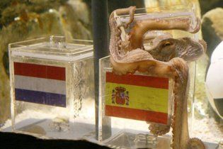 Провидець: чемпіонат світу виграє Іспанія