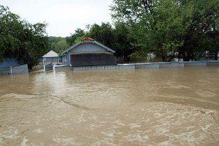 Прикарпатье просит у Кабмина 20 млн  для пострадавших от наводнения