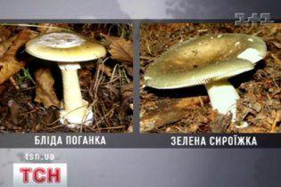 На Луганщині 5 людей госпіталізовано після споживання грибів