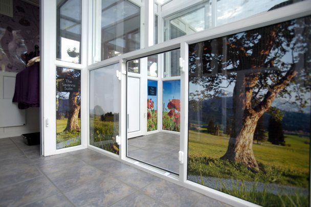У Британії відкрили фешенебельний готель для кицьок