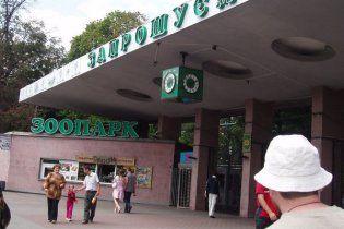Киевский зоопарк попал в Топ-5 худших в мире
