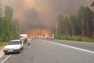Украинцы перестали отдыхать в лесах