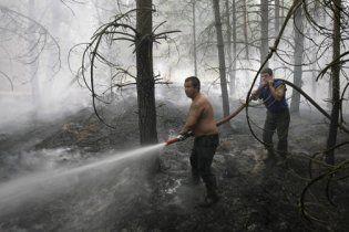 МНС пояснило дим над Києвом лісовими пожежами в Росії