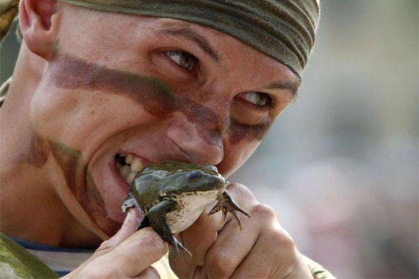 На своє свято десантники їли жаб