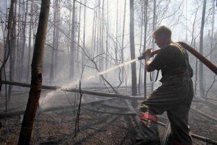 Под Москвой возобновились торфяные пожары