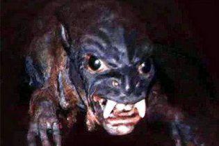 """Сумщину нажахав звір, страшніший за чупакабру - """"вовкособ"""""""