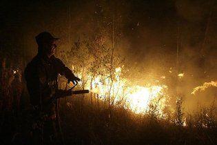 У Росії стало більше лісових пожеж