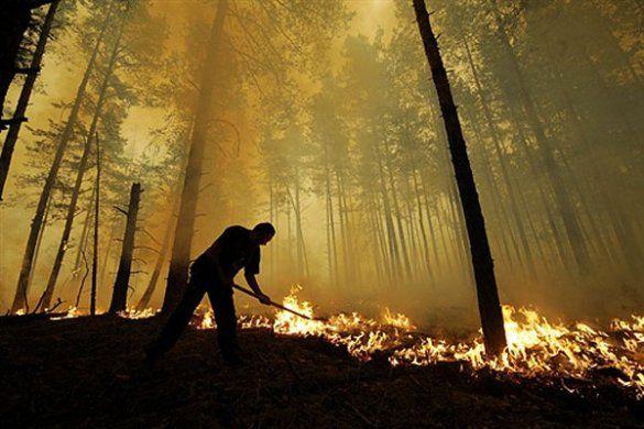 Лісові пожежі у Росії_1