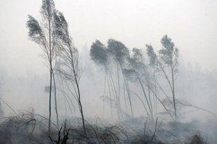 Ущерб от аномальной жары в России оценен в 15 миллиардов долларов