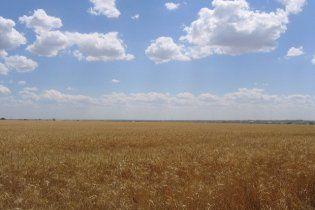 26 серпня в Україні спека не очікується