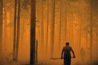 Незадовго до лісових пожеж у Підмосков'ї масово звільнили лісників