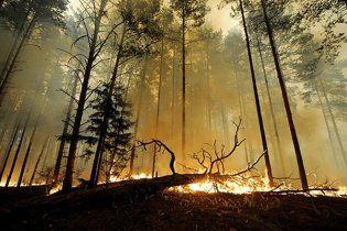 В Колорадо лесной пожар уничтожил полторы сотни домов