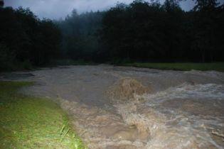 Украине из-за наводнения угрожает исток ядовитых веществ
