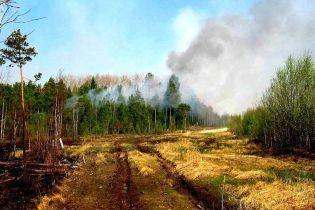 В Крыму горел заповедник