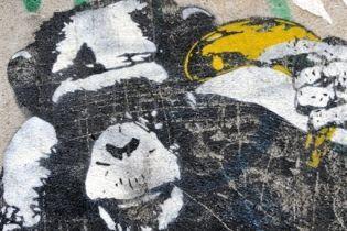 В Праге позволили разрисовывать стены (видео)