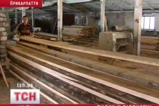 На Прикарпатье массово закрывают пилорамы (видео, обновлено)