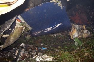 В авиакатастрофе погибло пять украинцев (видео)