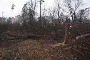 Рада запретила рубить деревья в Киеве