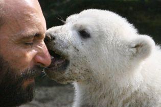 Опекун знаменитого медведя Кнута найден мертвым (видео)