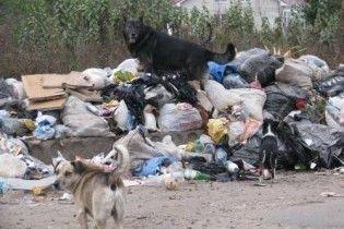 В пригороде Неаполя проходят акции протеста против новой мусорной свалки