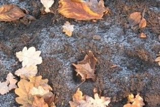 Неделя начнется с заморозков утром и тепла днем